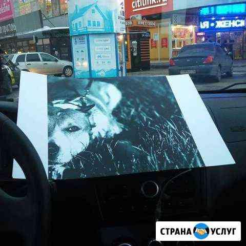 Фото, визитки, кружки, наклейки Курск