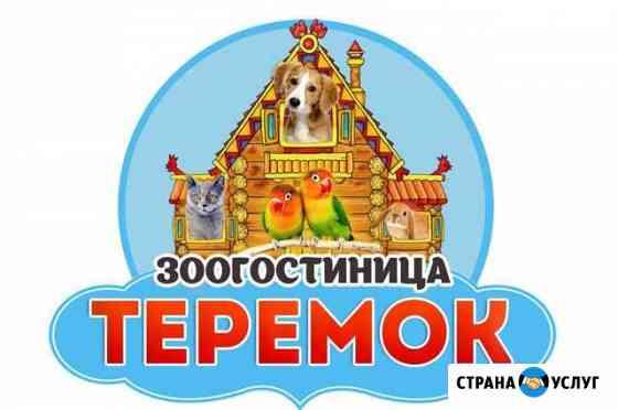 Зоогостиница для животных «Теремок» Петрозаводск