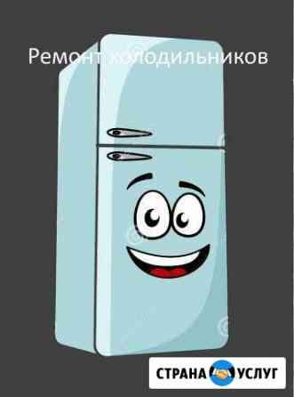 Ремонт холодильников и морозилок Липецк