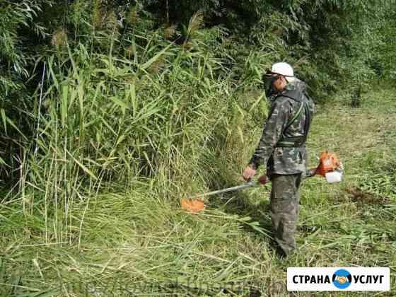 Покос травы Биробиджан