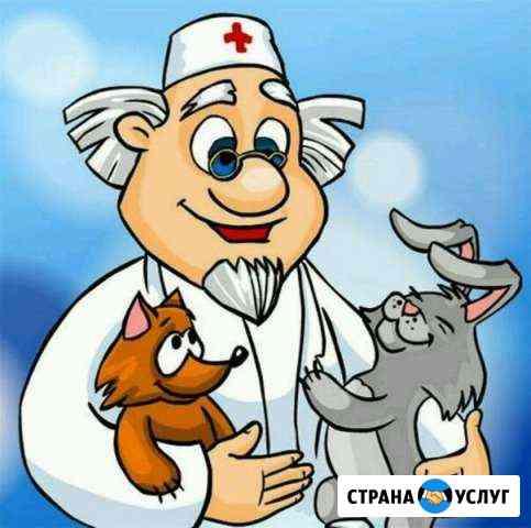 Ветеринарный врач выезд на дом Тамбов