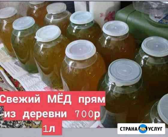 Мёд Солецкий Свежий и вкусный с Доставкой Сольцы