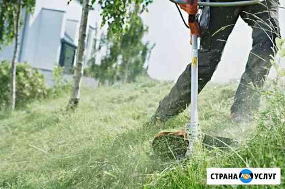 Скошу траву Исилькуль