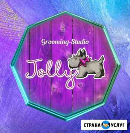 Груминг-студия «Jolly» (стрижка домашних животных) Чита