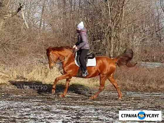 Верховая езда, иппотерапия Ростов-на-Дону