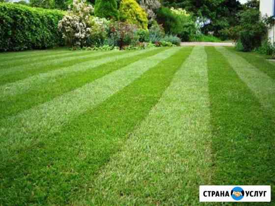 Стрижка газона, покос травы, аэрация, удобрение Руза