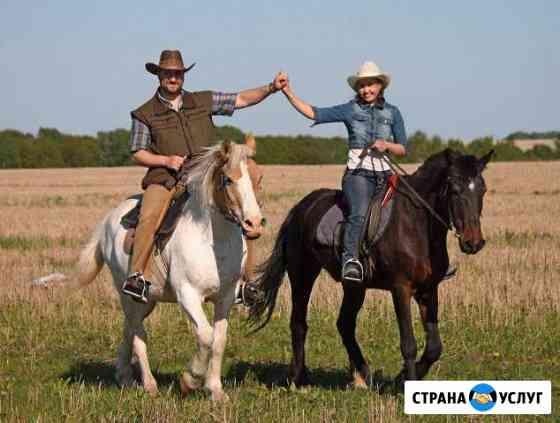 Катание на лошадях, в санях, сказочные фотосесии Богородск