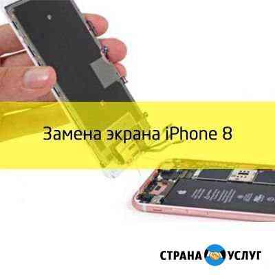 Замена экранного модуля для iPhone 8 Абакан