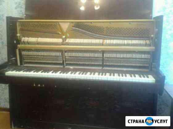 Настройка, обслуживание и ремонт фортепиано и роял Великий Новгород