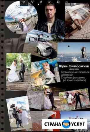 Фотограф свадебный профессионал Петропавловск-Камчатский