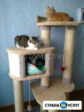 Домики, когтеточки, стенки для кошек и авт лотки Беломорск