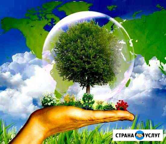 Разработка экологической документации Казань