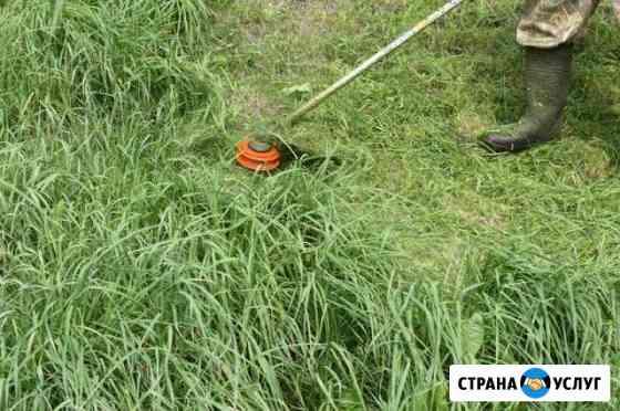 Покос травы Горно-Алтайск
