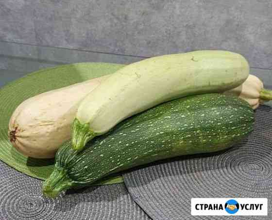 Кабачки цуккини Комсомольск-на-Амуре