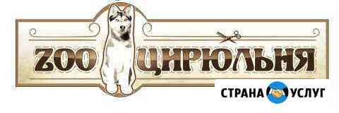 Стрижка и тримминг собак. Зоосалон зооцирюльня Великие Луки