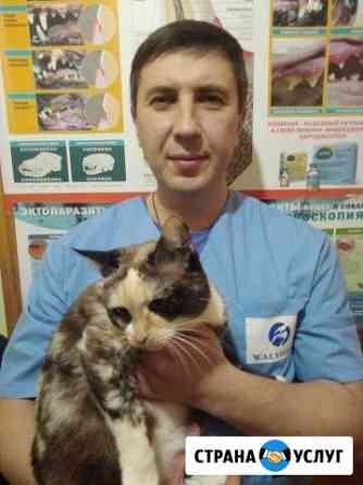 Ветеринарная служба Заречный