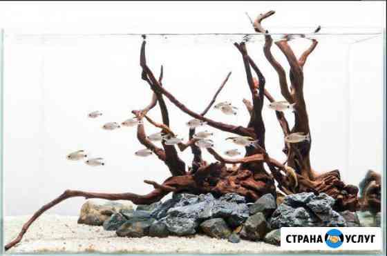 Изготовление и обслуживание аквариумов Ставрополь