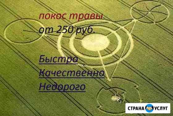 Покос травы, спил деревьев Яблоновский