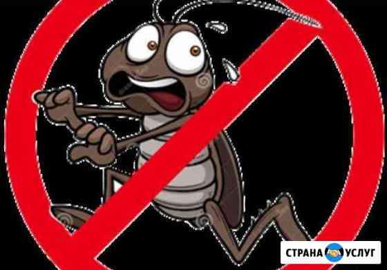 Дизенсекция, обработка от тараканов, клопов, клеще Черкесск