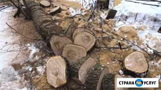 Спил и кронирование деревьев Магнитогорск