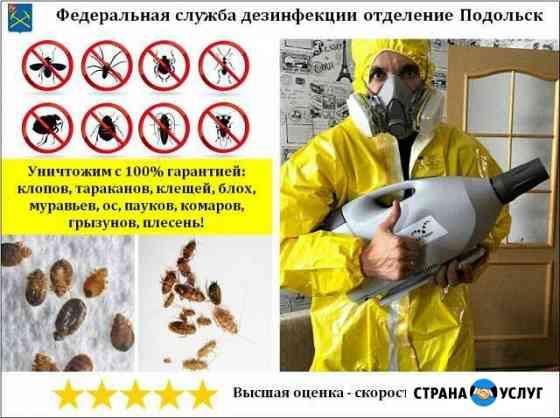 Уничтожение клопов, тараканов, клещей, насекомых Подольск