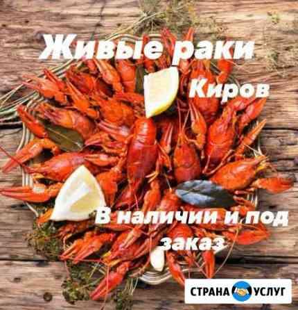 Раки живые и вареные Киров