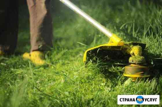 Покос травы триммером, вырубка кустов и деревьев Нижний Новгород