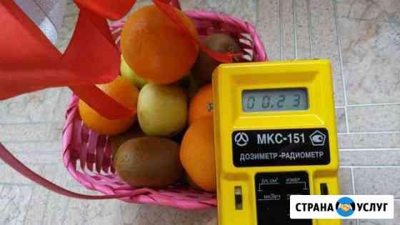 Аренда дозиметра / измерение радиации Омск