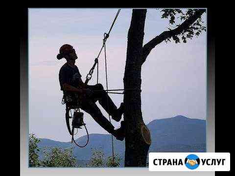 Удаление деревьев Киров
