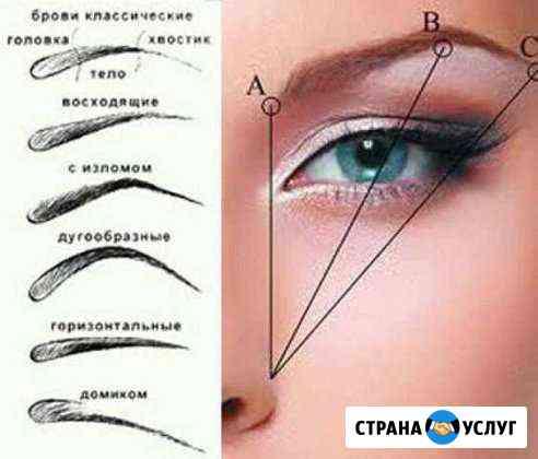 Мастер-бровист новейшие техники обучение Новокузнецк