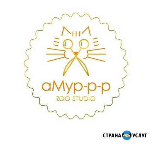 Стрижка кошек и собак, тримминг собак Петрозаводск