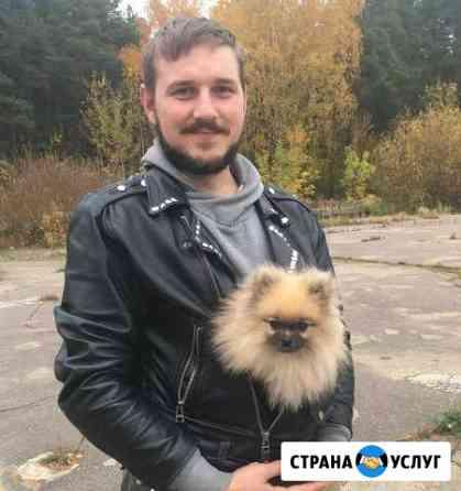 Курсы дрессировки собак, кинолог, кострома Кострома