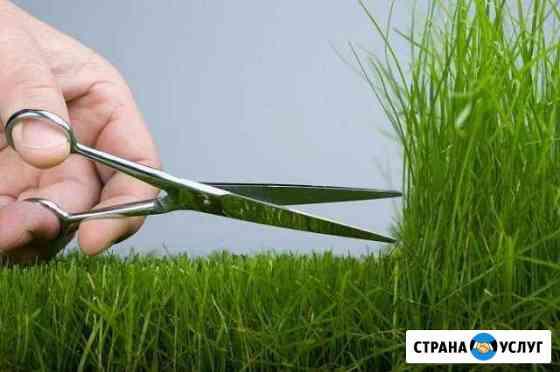 Покос травы, спил деревьев Таганрог