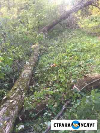 Вырубка деревьев Наро-Фоминск