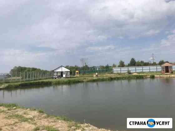 Отдых на берегу реки (клязьма) Пироговский