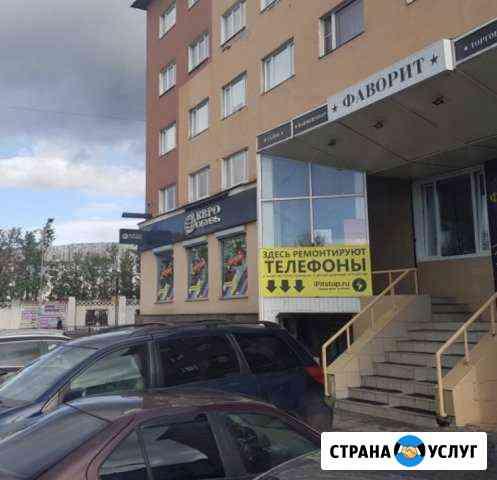 Срочный ремонт телефонов в день обращения Мурманск