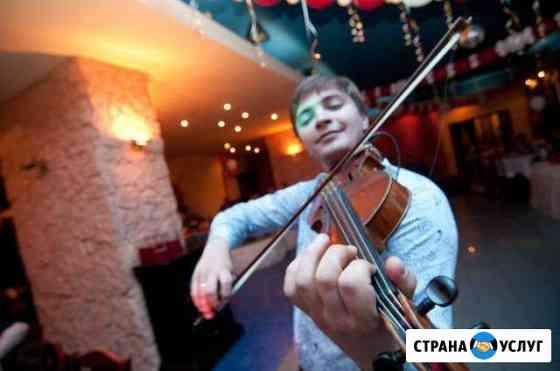 Скрипач в подарок Новый Уренгой