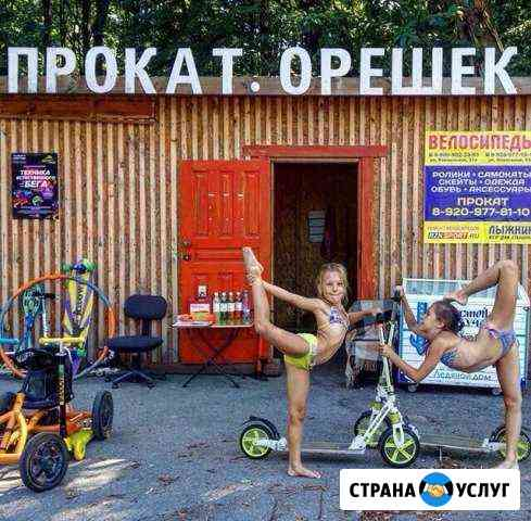 Прокат велосипедов, самокатов, роликов Рязань