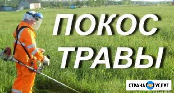Покос травы Кинешма