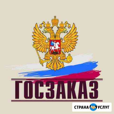 Услуги по сопровождению торгов (тендер) Саратов