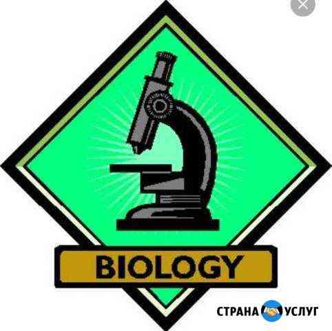 Репетитор по биологии Чехов