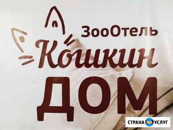 Зоогостиница, передержка Вологда