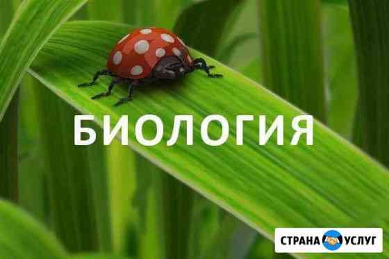 Репетитор по биологии Омск