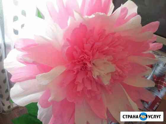 Ростовые цветы Кострома