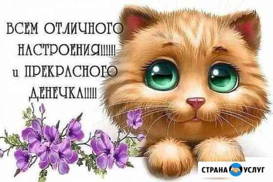 Эмоциональный совет Петропавловск-Камчатский