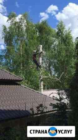 Спил и обрезка деревьев Казань