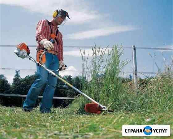 Покос травы и уборка участков Клин