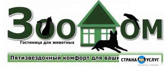Гостиница для животных Зоодом Калуга