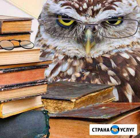 Репетиторские услуги студентам по экономике Ижевск