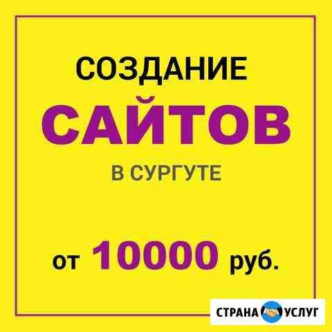 Разработка сайтов в Сургуте. Реклама и продвижение Сургут